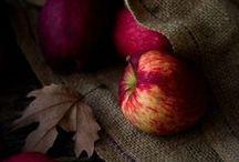 autumn / autumn  / by Aija Pole Rubule
