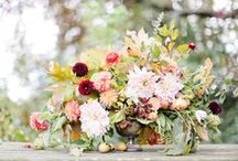 Thanksgiving Flowers / lush, autumnal blooms to adorn your harvest table. / by Adrienne Moore | The Bloom Of Time