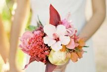 Tropical Wedding Inspiration / by Adrienne Moore | The Bloom Of Time