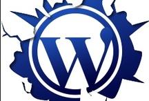 CMS - Wordpress / Wordpress / by UZU Media