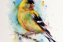 Birds of color / by Charlotte Phillips The Art With A Heart