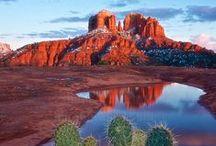 The Desert Southwest & All It's Beauty...