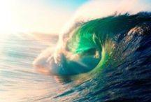 The Untamed Ocean