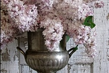 Shabby Bohemian Chic / I am obsessed with Shabby chic...simplistic decor that is subtle...and lovely things that go hand in hand with Shabby Chic!! / by Jeanine Tribley - A Fab Life in Jamaica