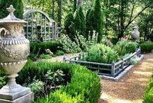 Garden / Vegies / Herbs / Fruit