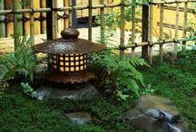 Japanese Gardens / by Karry Dempsey