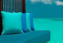 Tropical colors of Azure ~ Cyan