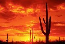 American Southwest / New Mexico, Arizona, Utah, Nevada, Colorado, Wyoming / by Kirsten Petersen
