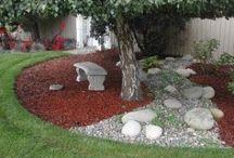 Garden & outdoor space  / Gardening