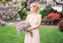 Anne Blodgett Photography / Oregon wedding and portrait photography