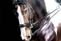 Horse Art / by Marcie Hart