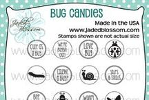 Bug Candies