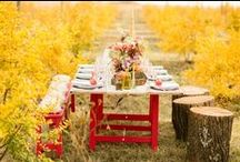 >>  Fall Wedding Color Trends  << / Love what your see and see what you love. / by Wedding Fashion Finds