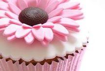 Cupcakes & Cake Pops / by Melanie Seielstad