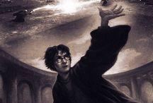 Harry Potter / by Maddie Vavricek