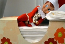 Elf - on the shelf / by cynthia bradshaw