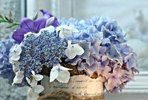 Flower Power / I fiori hanno un loro linguaggio unico e...colorato. Mi fanno battere il cuore e mi regalano mille idee da riproporre nell'arredamento