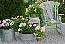 Arredo esterni / Portici, verande, giardini sono ambienti a tutti gli effetti. Da arredare con la stessa cura riservata agli interni. Eccovi alcune idee per sognare...all'aperto