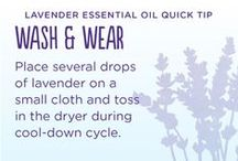 Essential Oils: Laundry / by Jessica Campbell