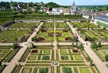 gardens I love / by Carolyne Roehm