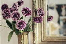 Mirror, Mirror / We love all sorts of decorative mirrors. The perfect complement to decor.