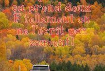175 raisons de visiter le Saguenay-Lac-Saint-Jean | 175 reasons to visit Saguenay-Lac-Saint-Jean / Découvrez 175 très bonnes raisons de visiter la région du Saguenay-Lac-Saint-Jean. Pour plus de détails sur chaque raison, visitez le http://bit.ly/2jf4u9b #175raisons #175reasons | Discover 175 good reasons to visit Saguenay-Lac-Saint-Jean for more informations: http://bit.ly/2jf4u9b
