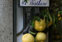 Italian Citrus