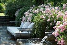 Outdoor Inspiration / Enjoying the garden day in day out