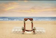 Our Beach Wedding Images / by SeaVenture Beach Hotel