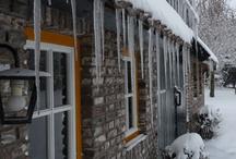 Season, Winter / by Andre Michielsen