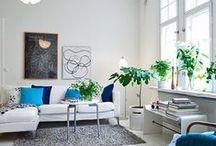 Decoración con plantas y flores / Ideas para decorar tu casa con plantas