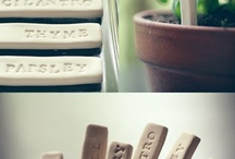 DIY Projects / by Lindsey Cooke
