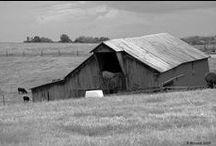 Barns / by Christino .