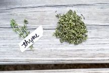 Hurrah for herbs! / Excite your taste buds with bursts of flavour, by adding a selection of herbs to your food....