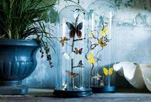 Butterfly interiors / The butterfly trend has been really popular over recent years, but we don't think it is going anywhere soon! Here is some fab ways you can include butterflies in your home......