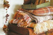 Cosy throws / Autumn is on the way, so wrap up warm with a cosy throw.....