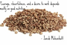 Nutty Quotes & Sayings