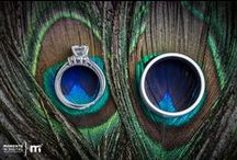 Peacock Wedding / by Amanda Parise