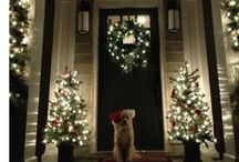 Christmas / by Amanda Parise