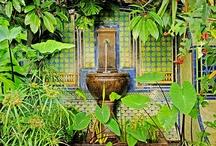 For your garden 1 / by Niloofar Hedayat