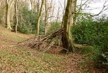 Dens We Love / We love dens and we love den building. Here's some inspiration for your own den building adventures.
