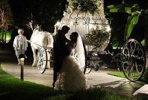 Disney Wedding / by Amanda Parise