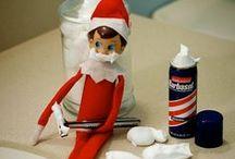 Holidays & Seasons - Christmas Elf on the Shelf  / by Michelle Johnson Carr