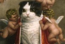 CAT MAD