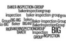 #GoBIG Home Inspection Business Infographics / Infographics showing business details