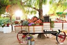 Gorgeous Produce