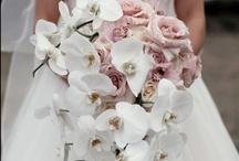 Bouquet / by Andrea Cabrera