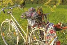 Flowers on a Bike / by Della Divens Sexton