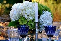 Table settings and Party ideas / by Serena Fresson