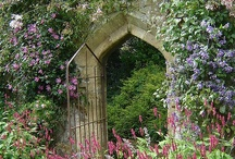 Garden Of Earthly Delights / Flowers, winding passages, walled gardens and places of tranquility.